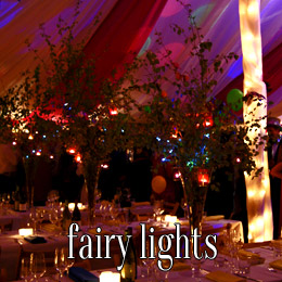 fairy lights - dp marquees