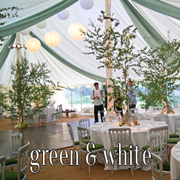 green white - dp marquees